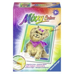 Yorkshire Terrier      Mixxy